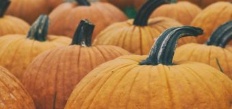 5 alternative ways to use pumpkin