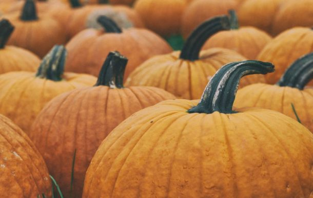5 alternative ways to use pumpkin